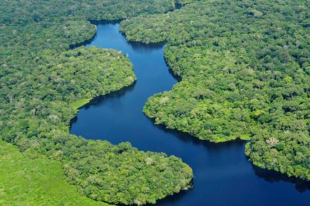 Bolsonaro Amazonas 5