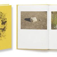 """""""Casa de Campo"""" de Antonio M. Xoubanova, convirtiendo lo ordinario en fantástico"""