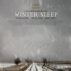 winter-sleep-carteles
