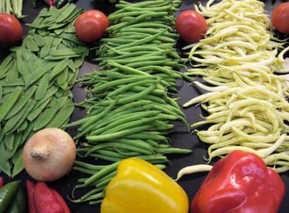 ¿Por qué debemos utilizar alimentos ecológicos?