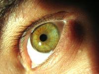 Dilatación de las pupilas: un indicador de consumo de energía mental
