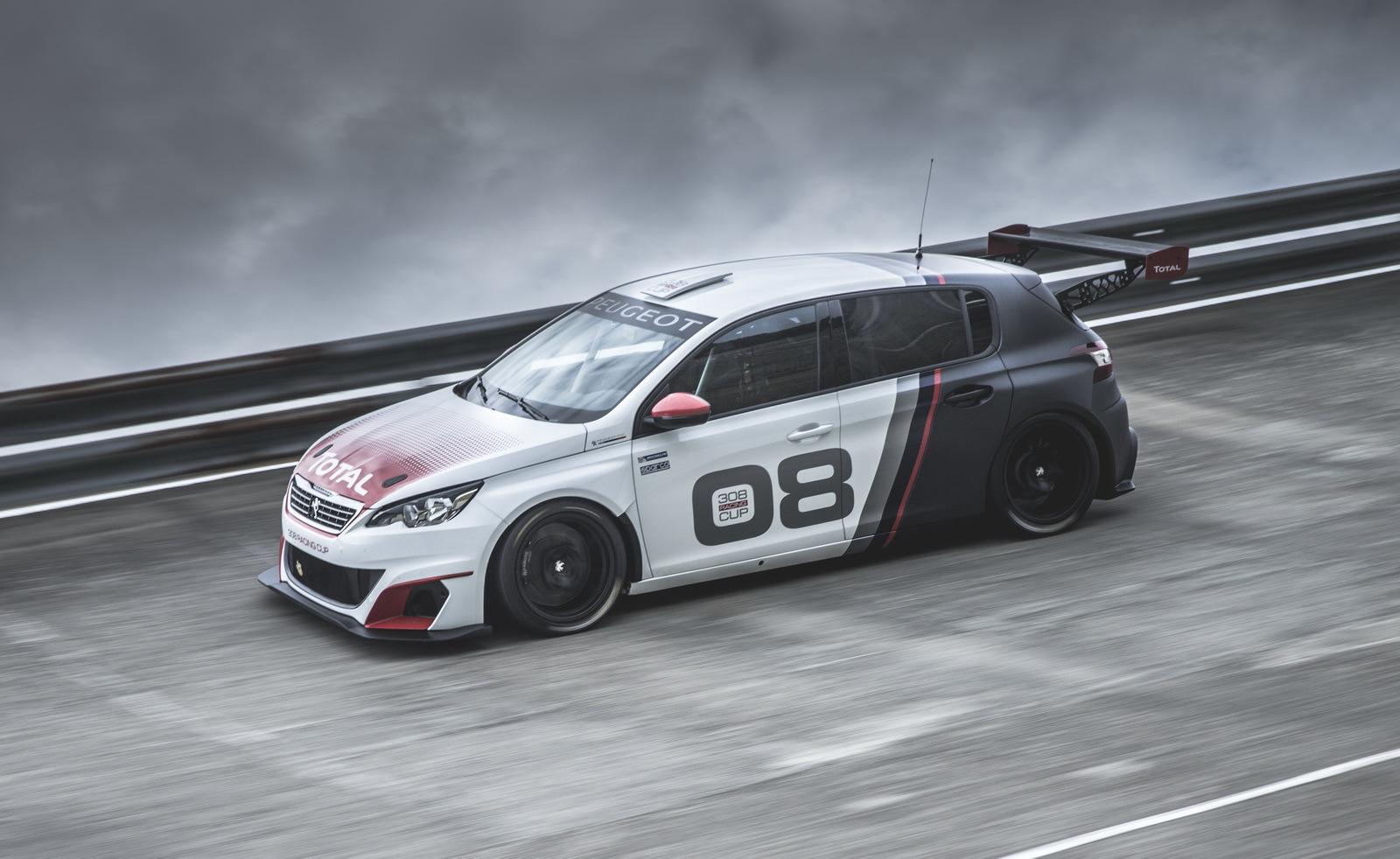 Foto de Peugeot 308 Racing Cup (12/13)