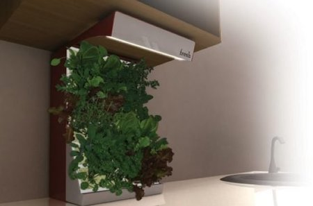Fresh un pequeo huerto vertical en la cocina