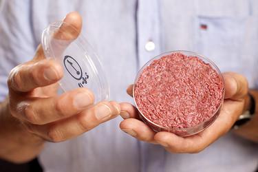 La carne in vitro ¿el futuro de nuestra alimentación?