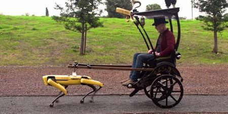 Un bicitaxi tirado por el perro-robot de Boston Dynamics: el nuevo e increíble invento del gran Adam Savage