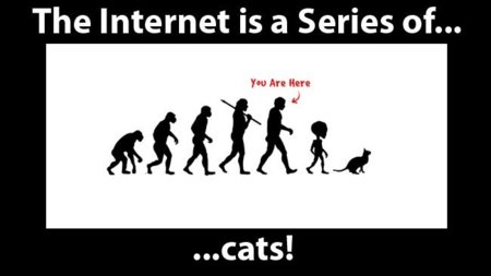 Internet is a Series of Blogs (LXVIII)