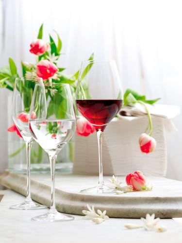 ¿Cómo afecta el alcohol el sabor de tus bebidas?