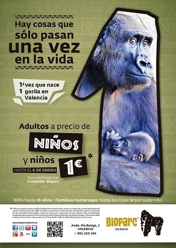 Bioparc Valencia celebra el nacimiento de su primer gorila con precios reducido hasta el 6 de enero
