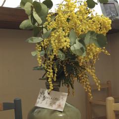 Foto 26 de 40 de la galería xiaomi-mi-mix-2-zoom-de-dos-aumentos en Xataka