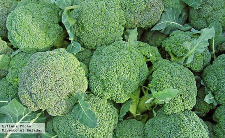 Brócoli recolectado