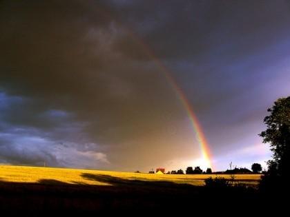 Regenbogen de alicepopkorn