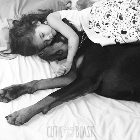 Cutie And The Beast Dog Girl Seana Doberman 100