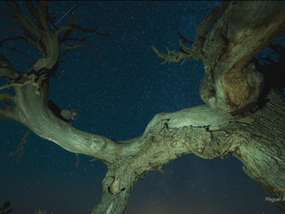"""""""Night Lights"""", de Miguel Ángel Langa, un timelapse donde las estrellas brillan con luz propia"""