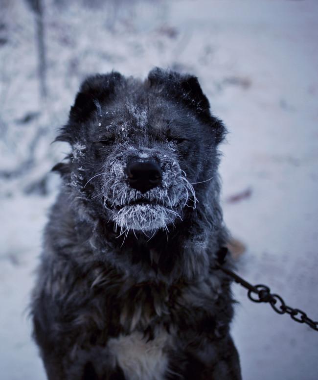Yakutsk Extreme City Amos Chapple 13