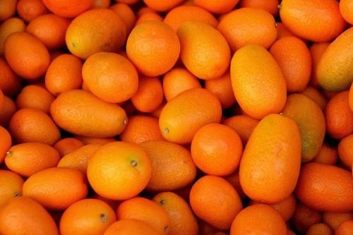 Kumquat: propiedades, beneficios y su uso en la cocina