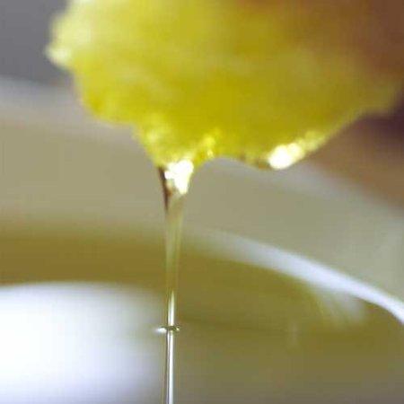 Arbequina, variedad de aceite de oliva