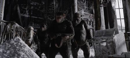 La Guerra Del Planeta De Los Simios 1 Large