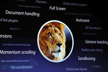 lion_2.jpg