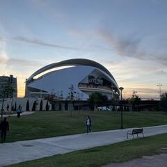 Foto 8 de 17 de la galería fotos-tomadas-con-el-ipad-air-2020 en Applesfera