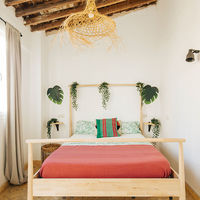 The Urban Jungle Hostel, un hostel alegre y de aires tropicales en Málaga