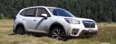 Manejamos el Subaru Forester 2019, un talentoso SUV que sólo pide un voto de confianza