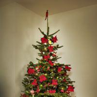 Hazlo tú mismo: las bolas de Navidad más naturales, un árbol decorado con poinsettias