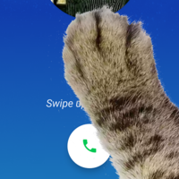 Descubre el nuevo y divertido huevo de pascua de la aplicación Teléfono de Google