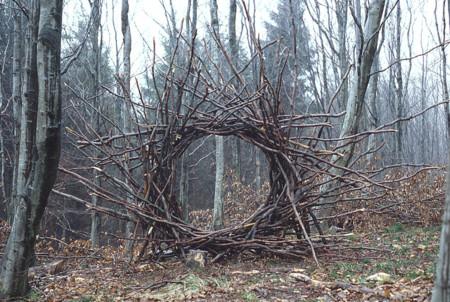 Círculo con un tejido de ramas