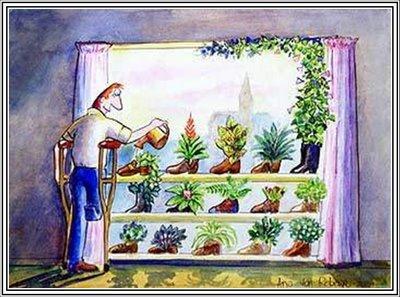 ¿A qué hora del día es mejor regar las plantas?