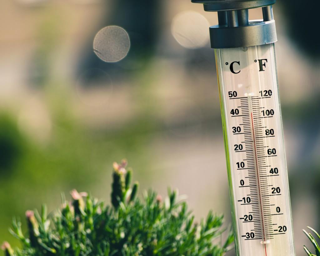 Esto es lo que argumentan quienes defienden que los grados Fahrenheit aire mejores para el ser humano
