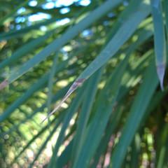 Foto 23 de 29 de la galería nokia-lumia-1020-5 en Xataka