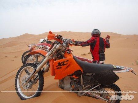 Enterradas en las dunas