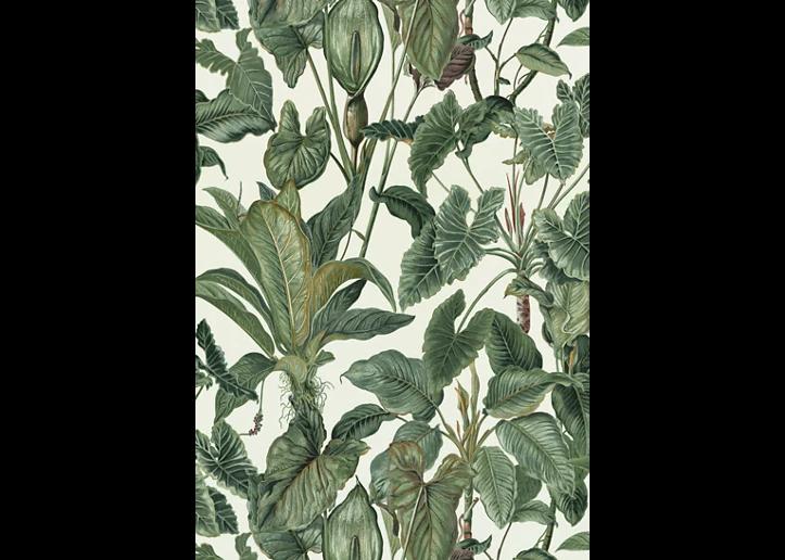 Papel pintado vinílico floral Tropical verde