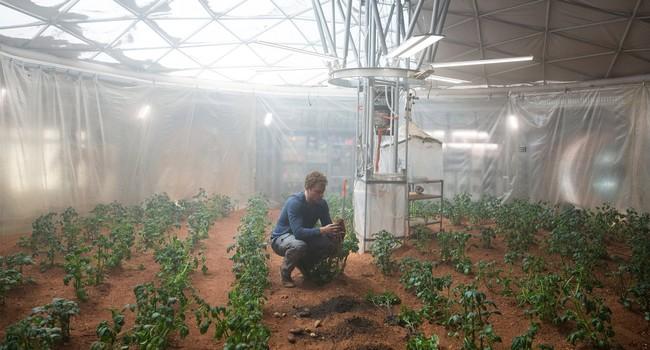 Martian Gallery13 Gallery Image