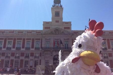 pollo-madrid-2.jpg