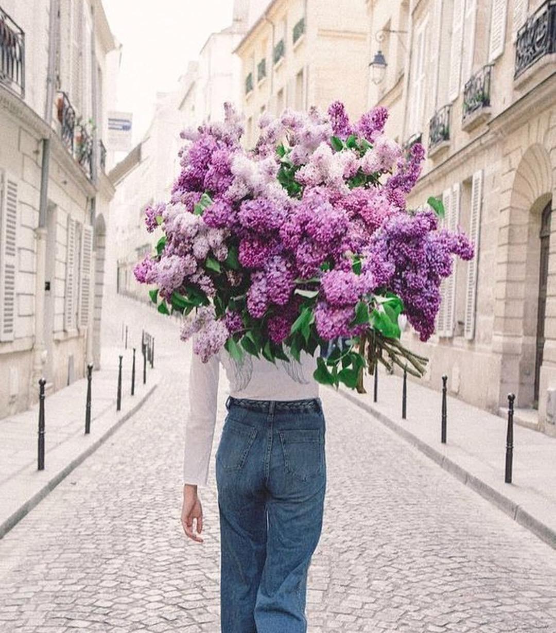 Cómo Preservar Más Tiempo Los Ramos De Rosas O De Flores Que Recibas Por San Valentín O En Cualquier Otro Momento