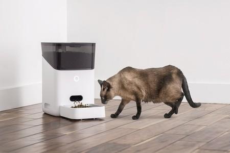SmartFeeder de Petnet