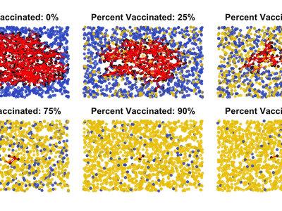 Cuantos más estemos vacunados, mejor: el gif que explica por qué la inmunidad de grupo es esencial