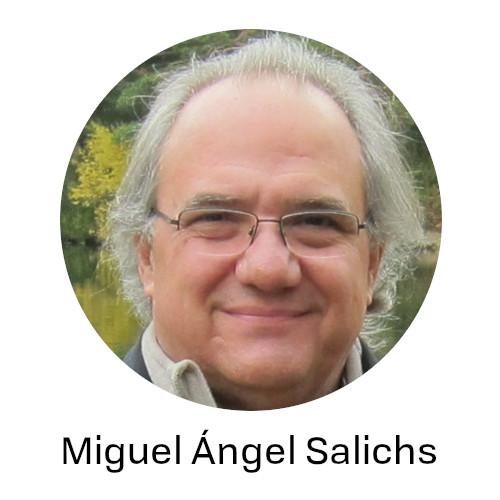 Salichs