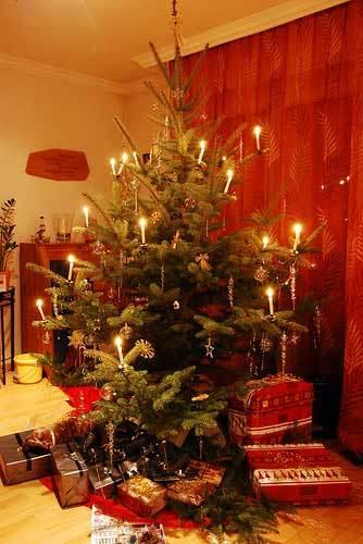 La altura perfecta del árbol de Navidad