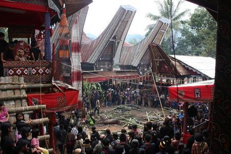 Tana Toraja, la tierra de los Toraja en Sulawesi, Indonesia