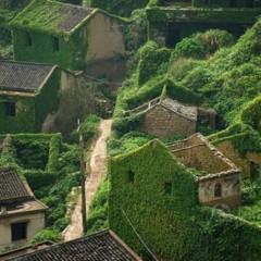 Foto 4 de 7 de la galería pueblo-chino-invadido-por-la-naturalez en Decoesfera