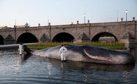 Es una escultura, no un cachalote, y que alberguemos dudas sobre ello es su brutal mensaje