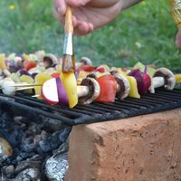 Cómo hacer una barbacoa vegetariana: 27 recetas fáciles y sabrosas para triunfar