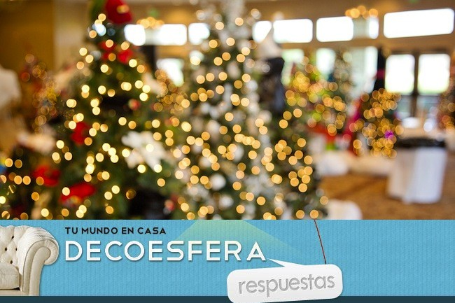 Christmas Trees 1042542 960 720