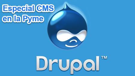 Cinco complementos y plantillas para Drupal: Especial CMS en la Pyme