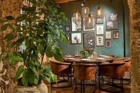 Restaurantes nuevos Cádiz