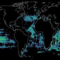 La gigantesca huella de la pesca en los océanos, ilustrada de forma magnífica en estos mapas