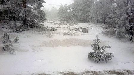 Nokia Lumia 620, nevada copiosa