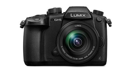 Panasonic Lumix Gh5 2